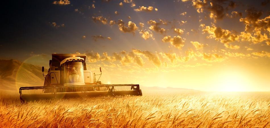 Фоны на открытки сельское хозяйство, званием