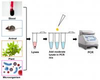 Direct PCR Kits