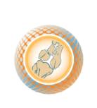 Пятый Юбилейный конгресс с международным участием «Медицинская помощь при травмах. Новое в организации и технологиях. Перспектив