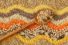 ЗерноРесурс