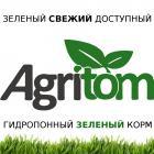 Гидропонный зеленый корм - выгода очевидна