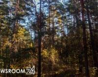 Нижегородская область внедряет новую концепцию лесопользования