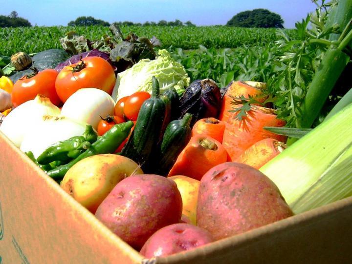 Экспорт продуктов питания в КНР увеличат