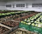 Надежное хранилище для фруктов и овощей