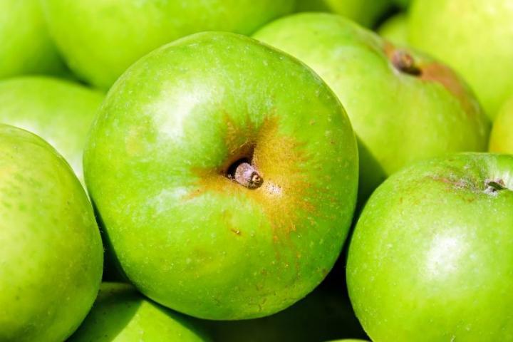 В Крыму урожай яблок превысил прошлогодний в два раза