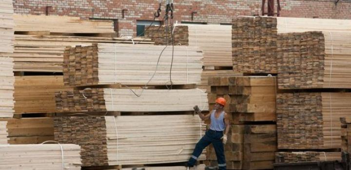 В Тюмени на лесном форуме обсудят развитие биржевой продажи древесины