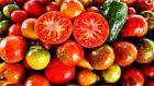 Форум-выставка «Кооперация – 2018» приглашает овощеводов и агрономов к участию