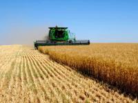 Во II чтении принят законопроект о патентной системе налогов в сельском хозяйстве