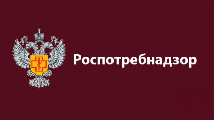 Роспотребнадзор изъял почти 800 шуб в Нижегородской области