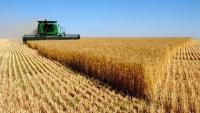 В Удмуртии объём производства продукции сельского хозяйства увеличен на 65 миллиардов рублей