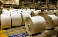В интернете появились сообщения об отмене строительства целлюлозного комбината под Череповцом. Экоактивисты усомнились в достоверности этой информации