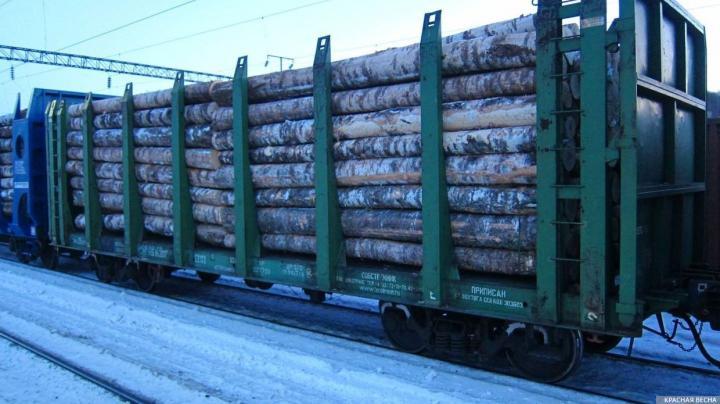 На лесозаводе в Архангельске рассказали, как увеличат переработку древесины