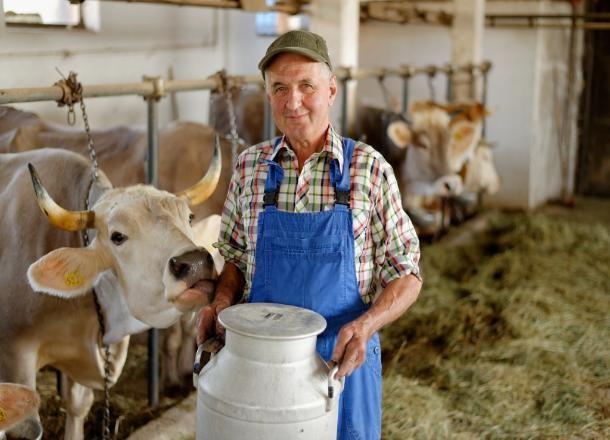 На Кубани начинающим фермерам дадут 110 миллионов рублей