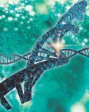 ЕПВ приняло решение о выдаче Merck патента на технологию CRISPR