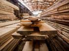 Лесные предприятия замерли в ожидании пошлины