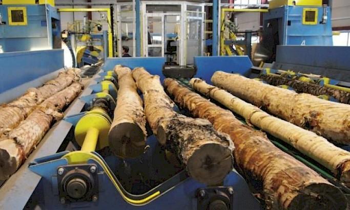 Тверская компания представила свою продукцию на выставке LIGNA-2019 в Германии
