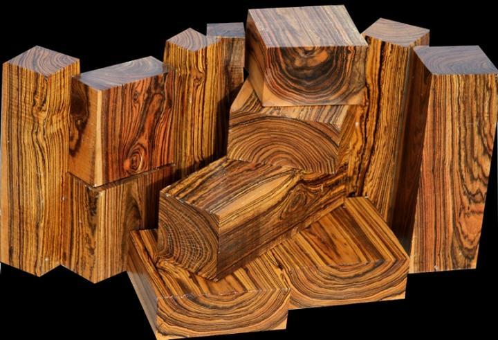 Из России в Китай вывезли древесину ценных пород