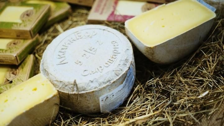 Подмосковье может обойти Алтайский край в производстве сыра