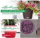 Купить цветы, кашпо и цветочные горшки в интернете