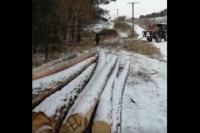 Лесхозы Башкирии получили партию новой спецтехники в рамках нацпроекта