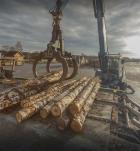 Группа компаний Runko Group высадила более 450 га леса в 2020 году
