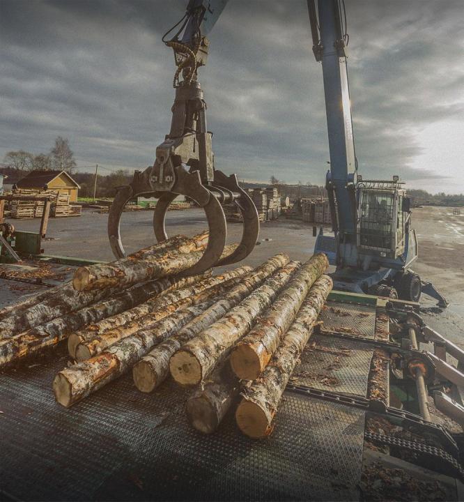 ГК Runko Group заключила контракт с норвежской компанией на экспорт дров