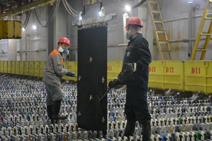 ЧЦЗ осваивает применение катаных анодов