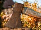 Вывоз необработанной древесины с Дальнего Востока уменьшился на четверть