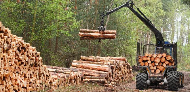 Украина перешла на европейские стандарты качества древесины