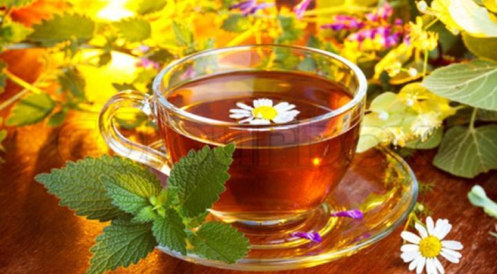 Рецепты здоровья: какой крымский чай считается самым полезным?