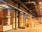 Деревообработка в Беларуси: кто создает прибыль и рабочие места