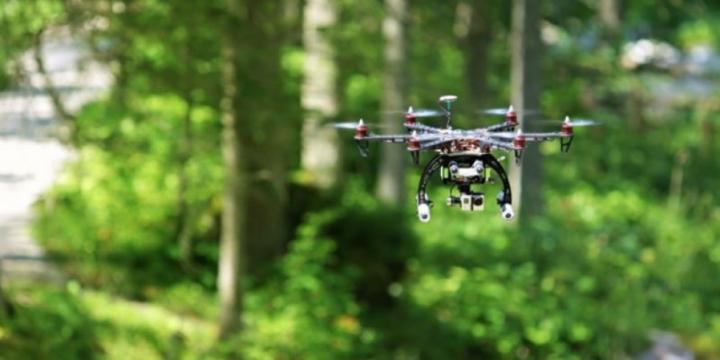 Беспилотные технологии будут использовать в лесном хозяйстве Тамбовского региона области